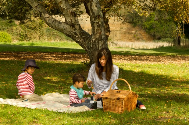 autumn picnic in New Zealand - Constanca Cabral