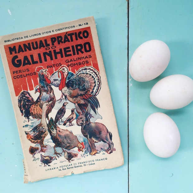 duck eggs and vintage book about keeping poultry