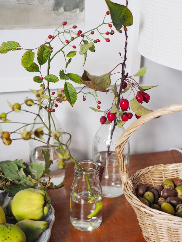 autumn nature table berries