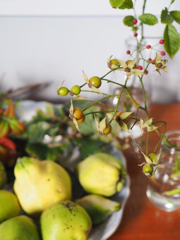 autumn nature table rosehips